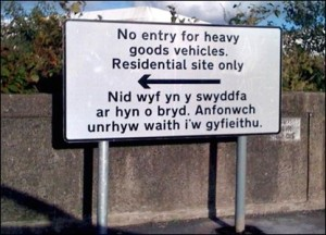 "The Welsh really translates as: ""I am not in the office at the moment. Send any work to be translated."""